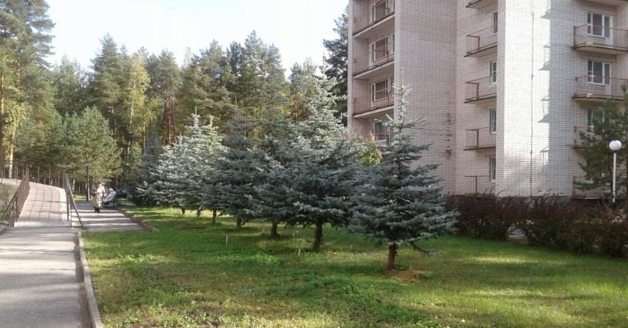 Официальное фото Санатория Русский Лес  звезды
