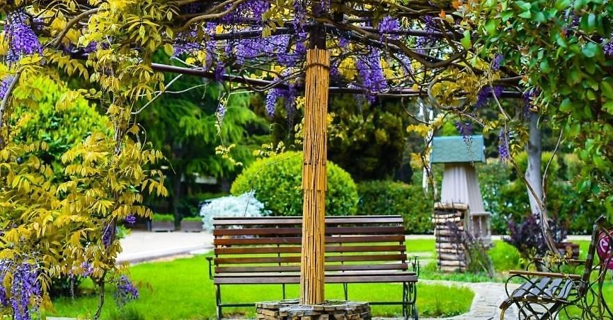 Официальное фото Санатория Голден Фэмили 3 звезды